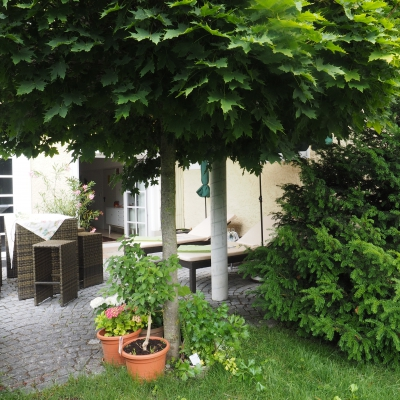 Residenz-Garten-73